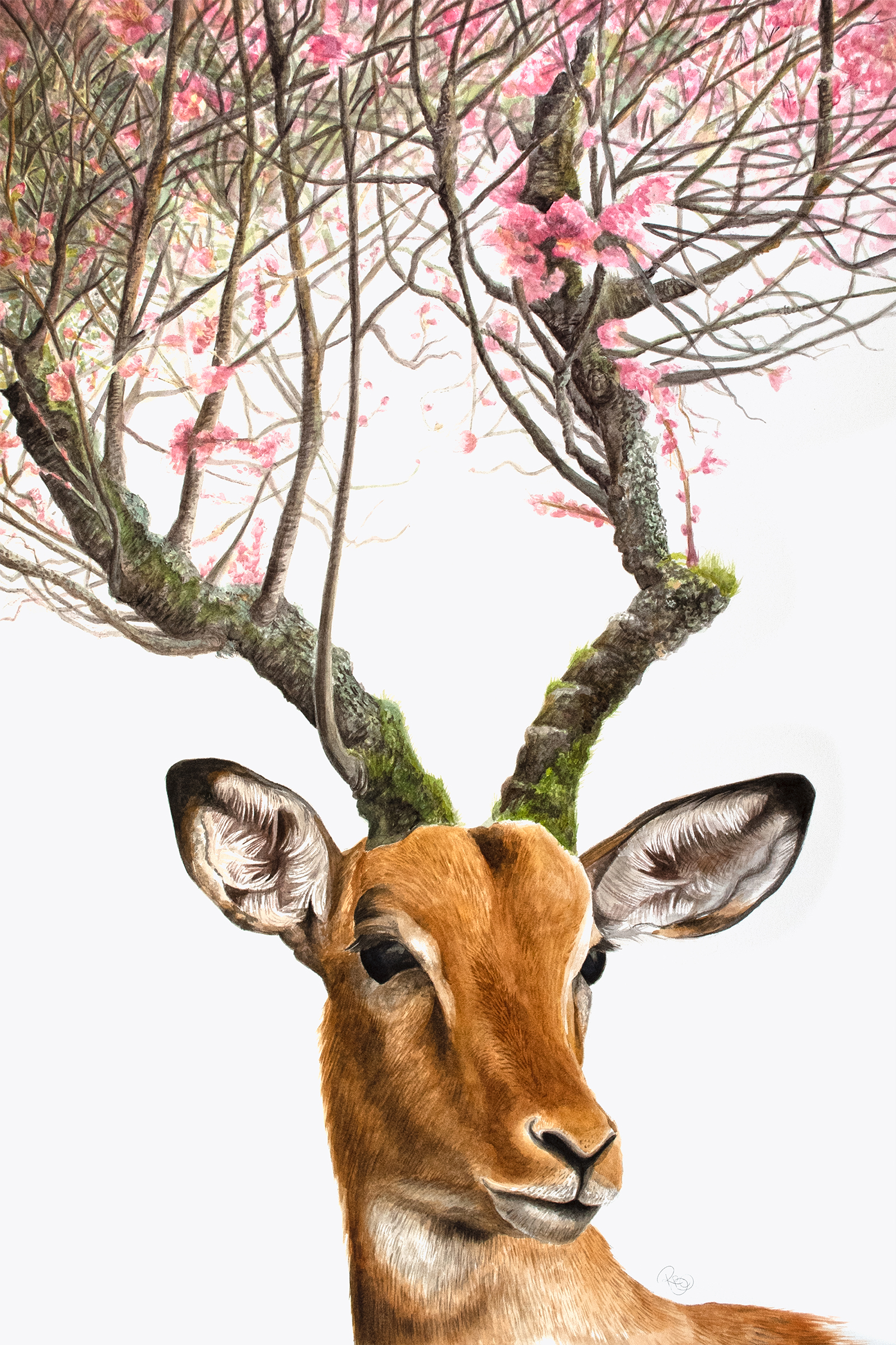 African antelope, impala, with horns made of tree bark covered in moss turning into cherry tree branches on which pink cherry blossoms are blooming