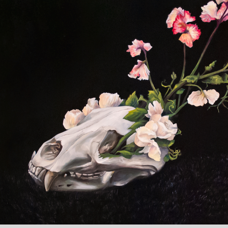 A bear skull sits on top of a pelt of black fur. From the eye cavity a bushel of white roses vines and coral iris bloom from the skull